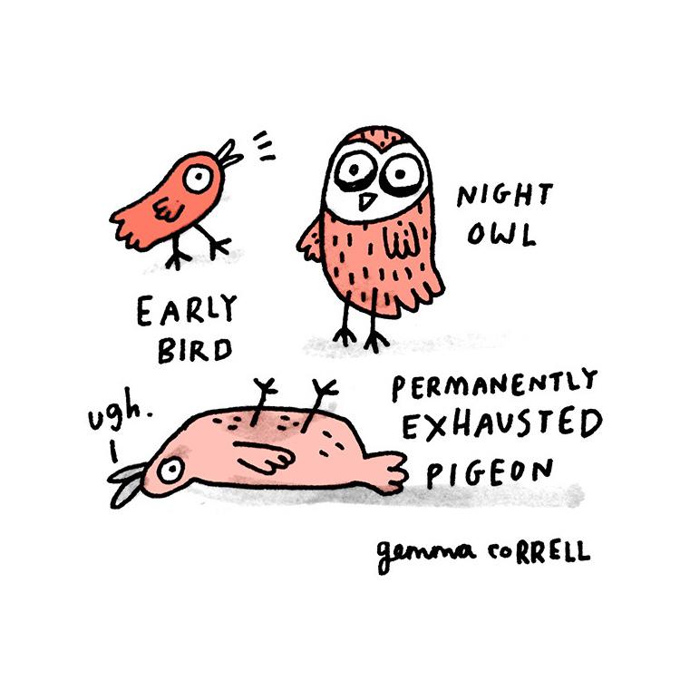 Gemma Correll Birds
